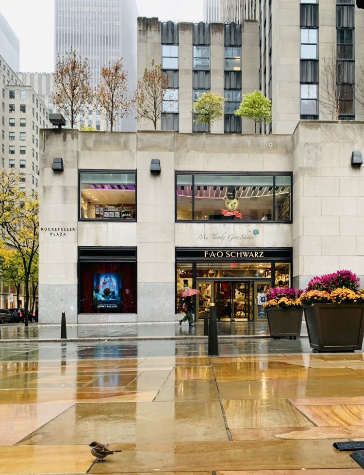 FAO Schwartz, in Rockefeller Center, NYC, is one of the most famous toy stores in the world. | Ms. Toody Goo Shoes