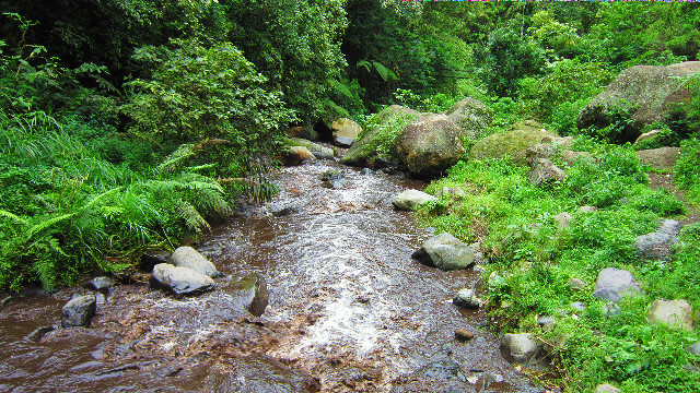 sungai di coban pelangi