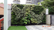Vertical Garden Concept Buildings Greenwall