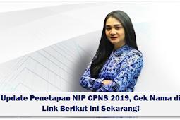 Update Penetapan NIP CPNS 2019, Cek Nama di Link Berikut Ini Sekarang!
