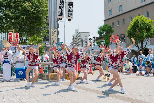 葵新連、赤ハッピ(子供踊り)の写真 2枚目