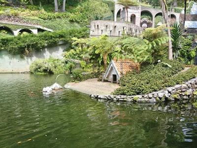 jardim tropical garden-  Monte Palace