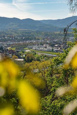 Premiumwanderweg Murgleiter | Etappe 1 von Gaggenau nach Gernsbach | Wandern nördlicher Schwarzwald 08