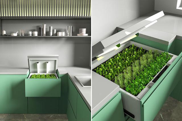 conceptual home garden