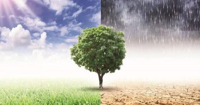 ülkemizde-hakim-olan-iklim-tipleri