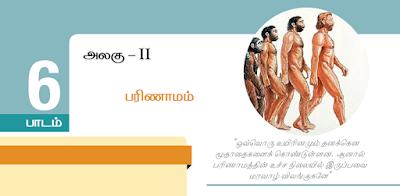 KALVISOLAI ONLINE TEST - CLASS 12 BIOLOGY ZOOLOGY - பாடம் 6 பரிணாமம் - 1 MARK QUESTIONS