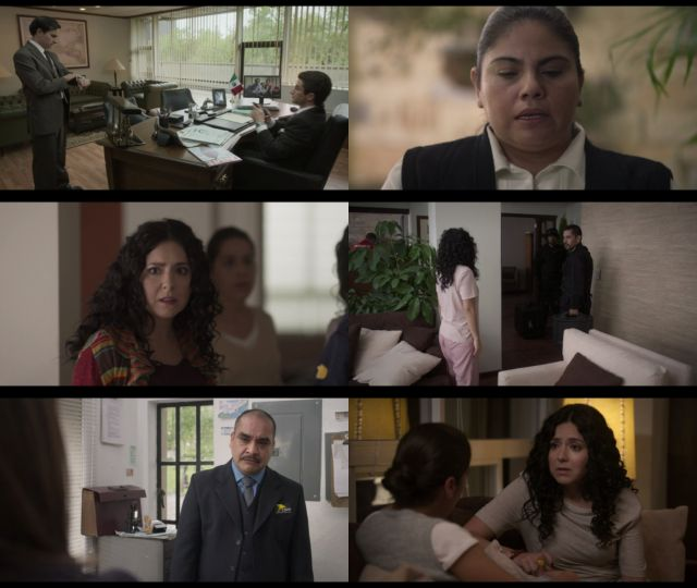 Historia de un Crimen: La Busqueda Temporada 1 (2020) HD 720p Latino