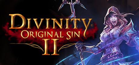Descargar Divinity Original Sin 2 Juego de Rol desarrollado por Larian Studios para pc full ingles y español mega acceso anticipado.