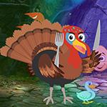 Games4King Turkey Bird Escape