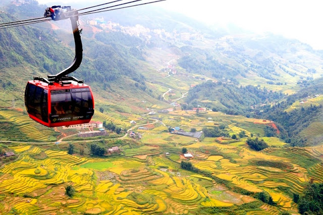 Fansipan Cable Car Tour Is A Great Choice For A Ripe Rice Field Trip In Sapa