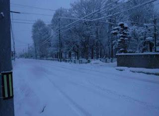 自動車道の積雪具合