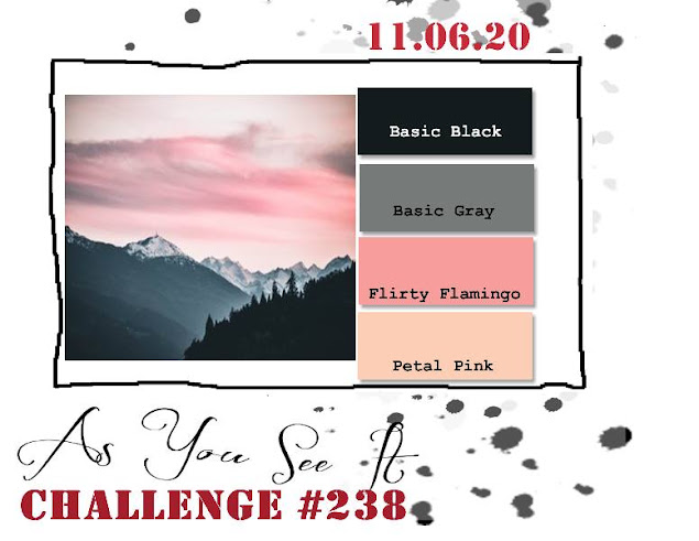 challenge 238 1