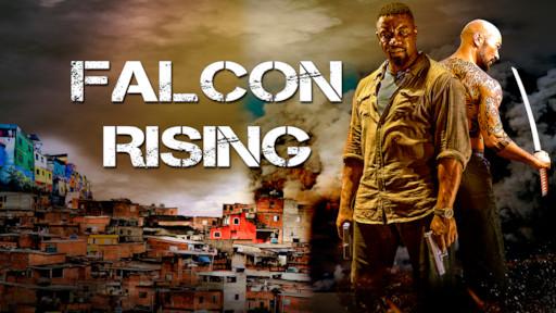 Falcon Rising, 2014