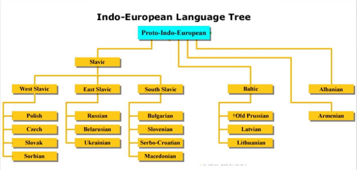 Indo-Iranian Language Branch- Structure & Dialects - MustGo  Indo Language