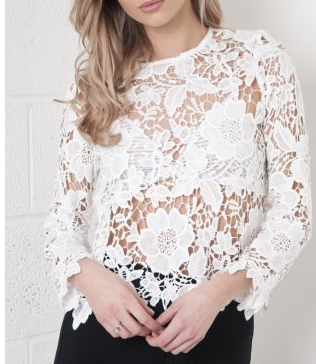 http://www.missfoxy.co.uk/clothing-c1/crochet-lace-long-sleeve-top-in-white-p328