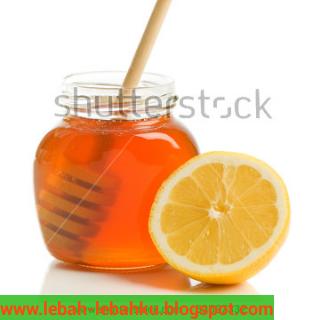 manfaat madu untuk kulit muka wajah bibir dan mata
