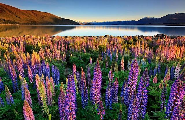 keindahan alam