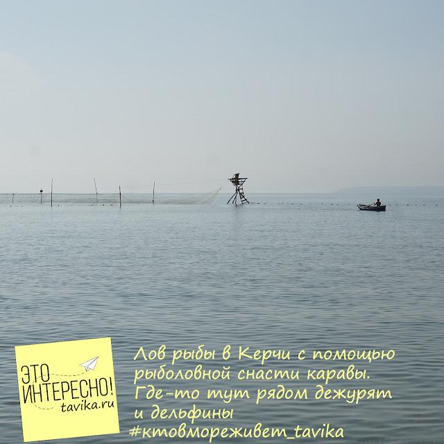 Карава - рыболовная снасть в Крыму