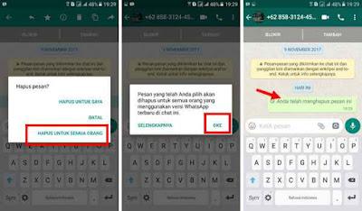Menarik Pesan Terkirim di WhatsApp Gagal