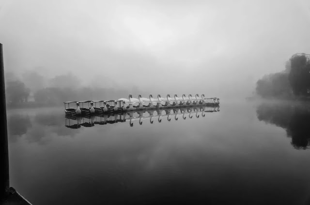 Swan Boats Foggy Burnham Lake Baguio City Cordillera Administrative Region Philippines