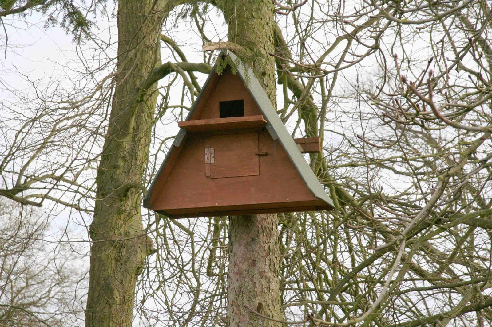 Bisham Barn Owl Group: Owl boxes for Hughenden Park
