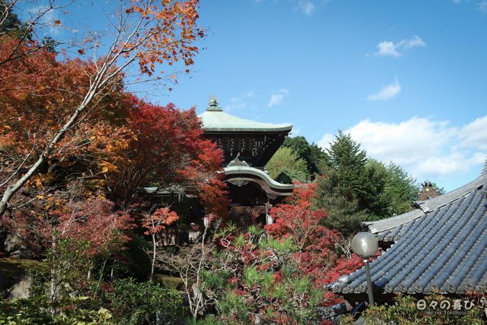 Végétation au temple Daisho-in, Miyajima, Hiroshima-ken