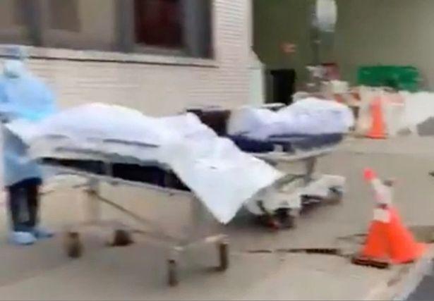 coronavirus dead bodies