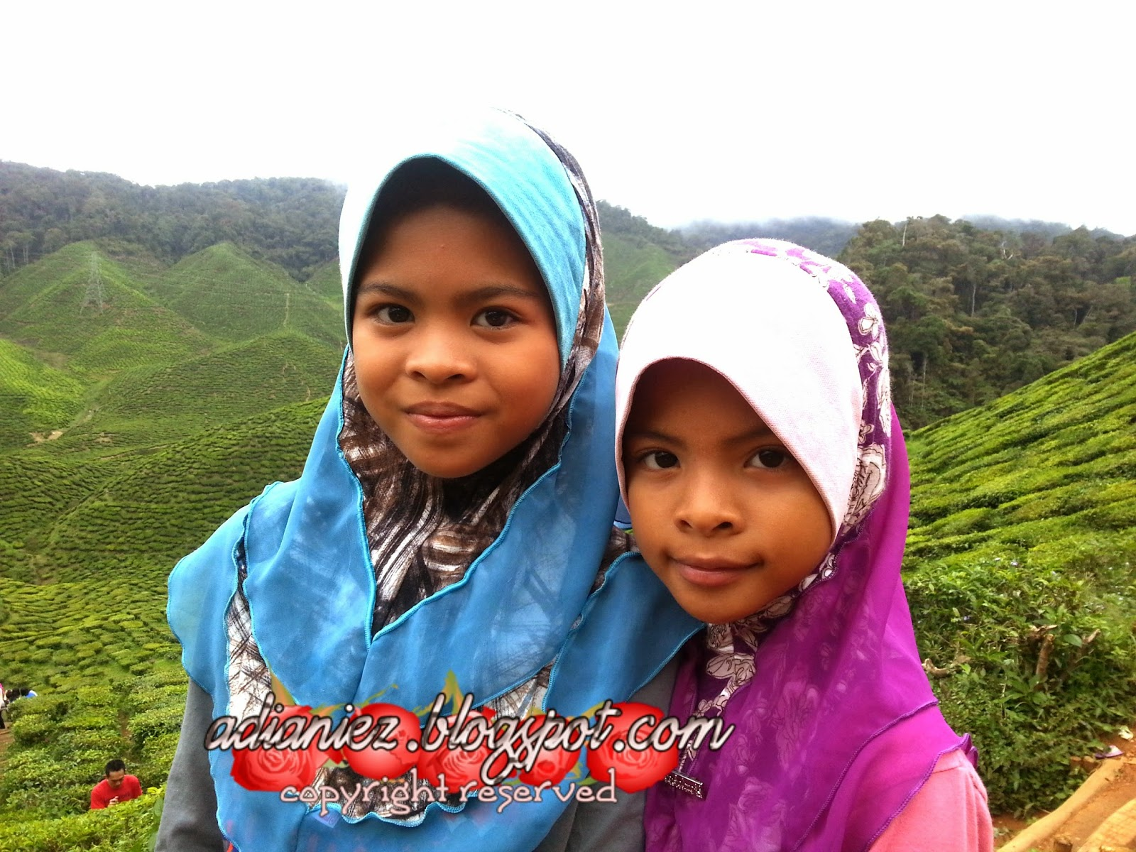 FINALLY, SINGGAH SEKEJAP ~ LATA ISKANDAR & BHARAT TEA PLANTATIONS (CAMERON VALLEY)