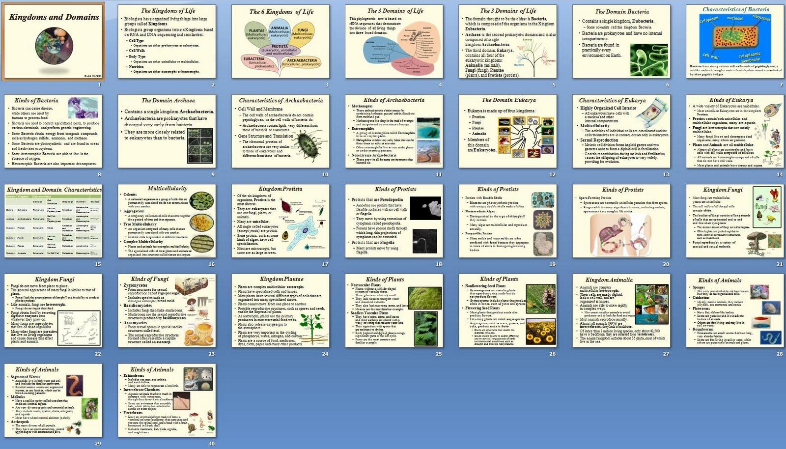 The Lesson Guide Classification And Kingdoms Unit Lesson
