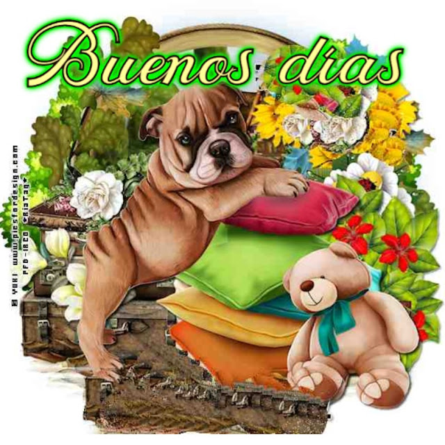 perro buenos días