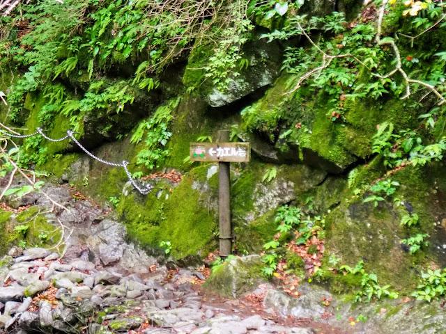 西沢渓谷 カエル岩看板