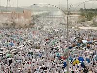Aktifitas Jutaan Jemaah Haji Wukuf di Arafah