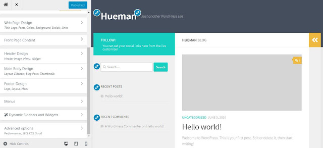 Hueman Customizer