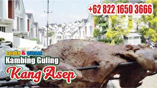 Kambing Guling Lembang Bandung Pastinya Bergaransi, kambing guling lembang, kambing guling bandung, kambing guling lembang bandung, kambing guling,