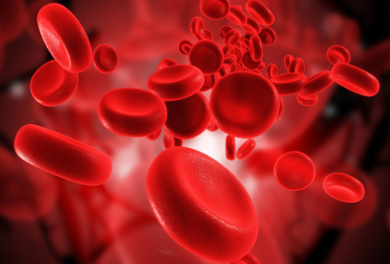 Best Iron Supplements For Anemia - healtinews