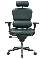 LE9ERG Ergohuman Chair