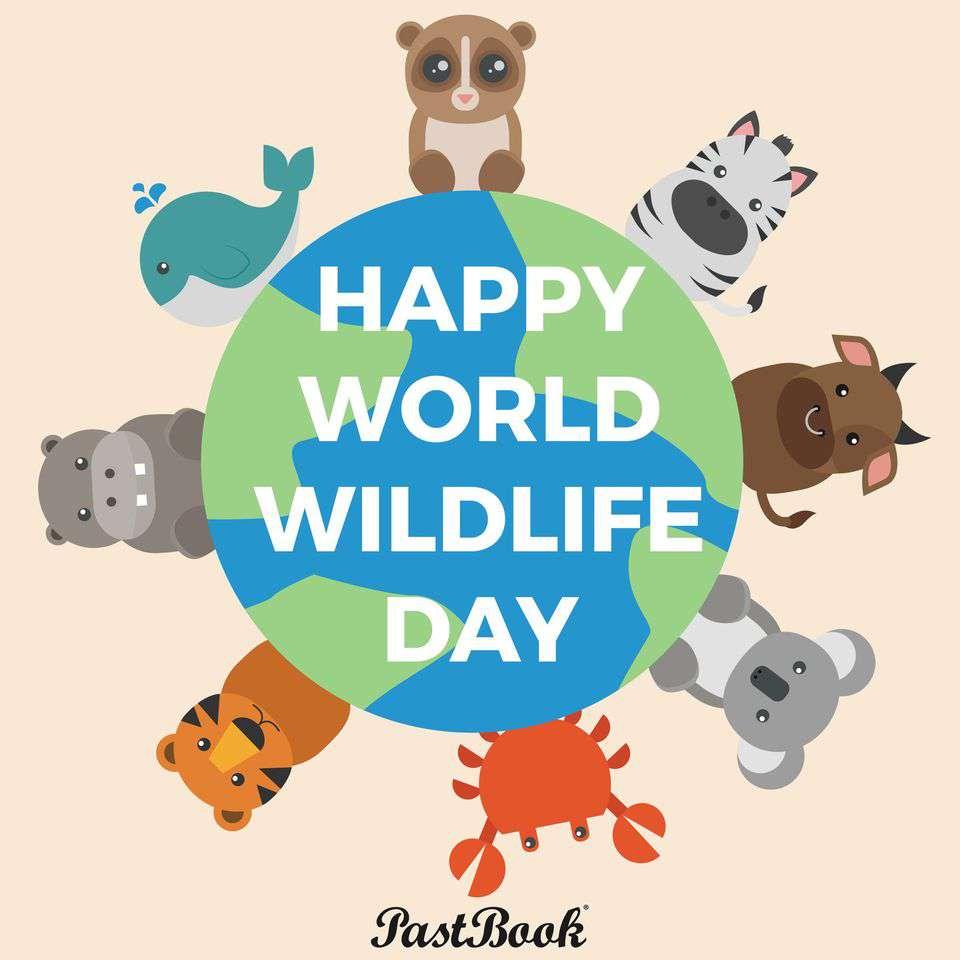 World Wildlife Day Wishes Unique Image