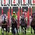 25 Aralik 2018 Yarış Yazarlarının KOCAELİ At Yarışı Tahminleri, Hazır Altılı Kuponları (GÜNCELLENDİ)