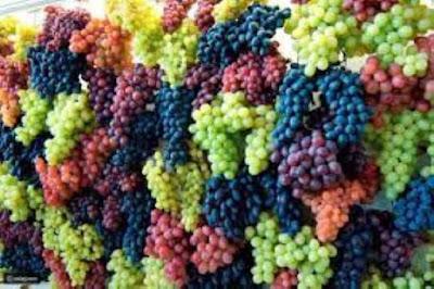 فوائد العنب المدهشة