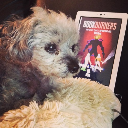 A sleek grey poodle, Murchie, lies on a fuzzy cream pillow. His ears are perked. Propped up behind him is a white Kobo with Bookburners S2E2's cover on its screen. The cover features a stylized illustration of two feminine people facing an enormous, humanoid figure in what looks to be a black diving suit with a lit face plate.