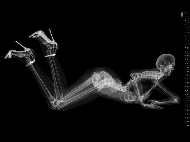 Eizo nude X-ray calender 2010 april