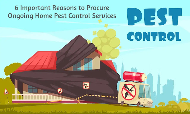 6 Important Reasons to Procure Ongoing Home Pest Control Services