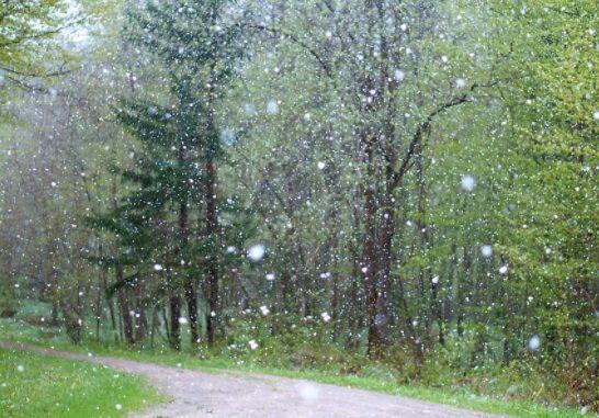 Haruskah Berhenti Gowes Saat Musim Hujan? Simak Tips dari Kami