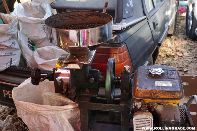 Aroma harum kopi kampung kuala perlis