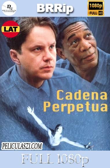 Sueño de Fuga (1994) Full HD BRRip 1080p Dual-Latino