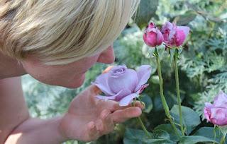 Un estudio determina cómo el olor fija recuerdos en el cerebro
