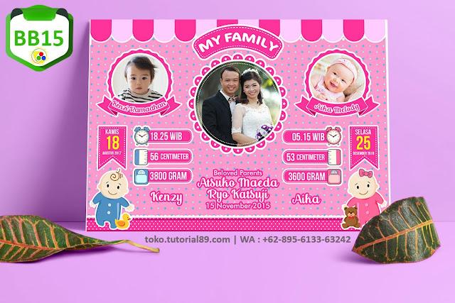 Biodata Bayi Costume BabyTwins Kode BB15 | Bayi Kembar