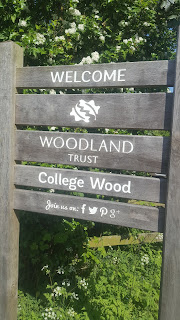 The Woodland Trust Welcome to College Wood sign