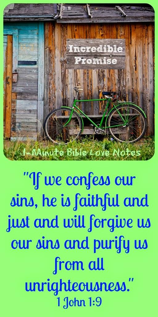 1 John 1:8-9, forgiveness of sins, vanity sizing, facing our sins