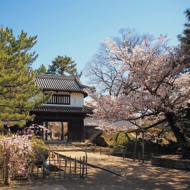 亀城公園 土浦城 櫓門